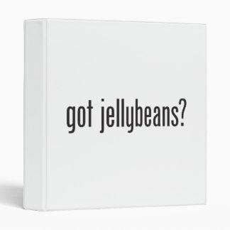 got jellybeans vinyl binders