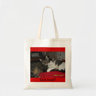 Got love - cats on a bag
