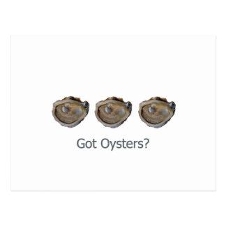 got oysters? postcard