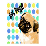 got Pugs? Pop Art Postcard