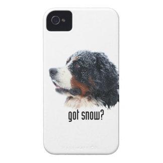 Got snow? Bernese iPhone Case