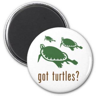 got turtles? 2 inch round magnet