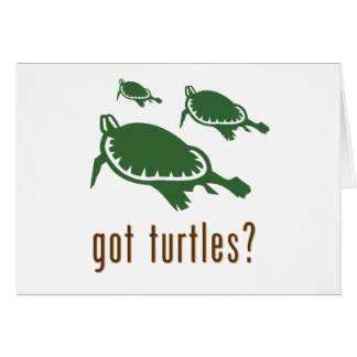 got turtles? greeting card