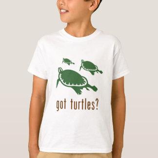 got turtles? shirts