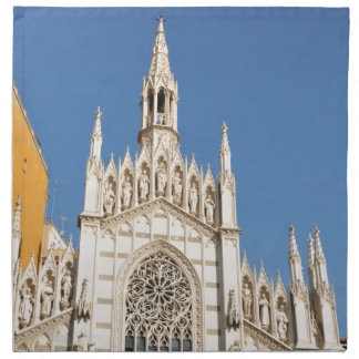 Gothic architecture in Rome, Italy Napkin