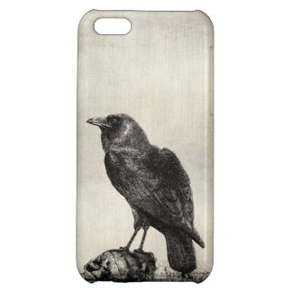 Gothic Horror Case The Raven and Skulls