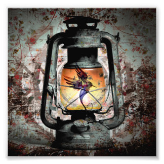 Gothic Hummingbird Lantern Photo Print