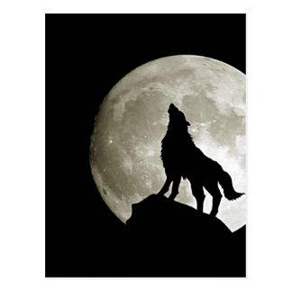 Gothic Wolf Postcard