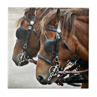 Gotland Ponies Tile