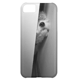 gotta go cover for iPhone 5C