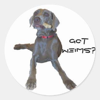 GotWeims? Pin Weimaraner Classic Round Sticker