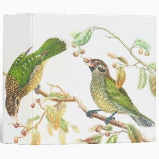Gould Catbird Birds Binder