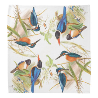 Gould Kingfisher Birds Bandana