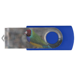 Gouldian morning to you USB flash drive