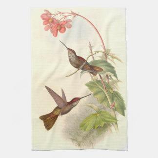Goulds' Hummingbirds Kitchen Towels