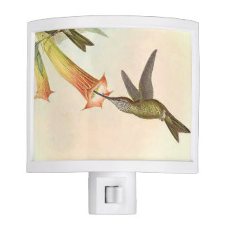 Goulds' Hummingbirds Night Light