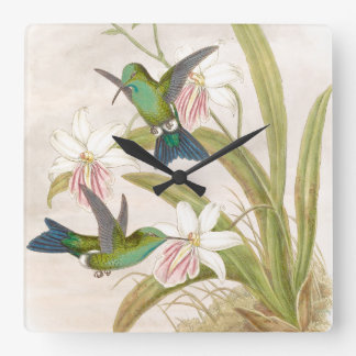 Goulds Hummingbirds Wall Clock