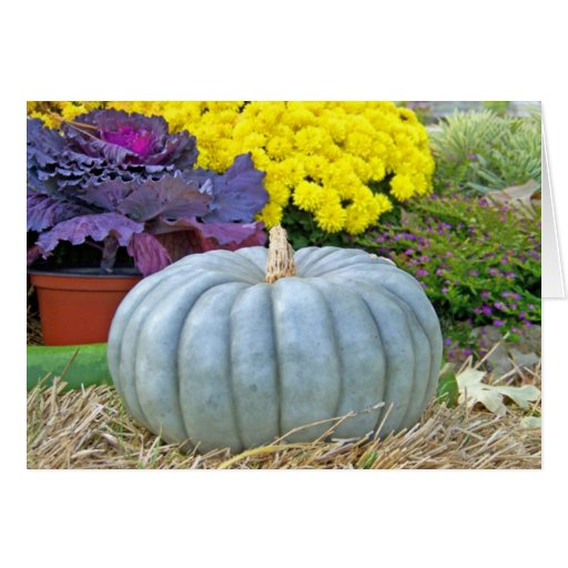 Gourd and Mums Happy Thanksgiving Greeting Card