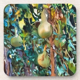 Gourds After John Singer Sargent Coaster