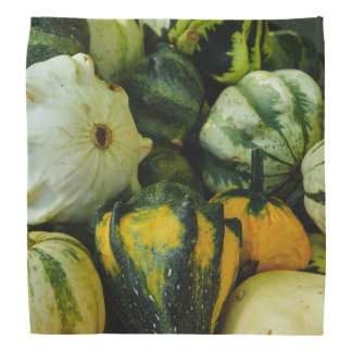Gourds Galore Bandana