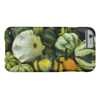Gourds Galore Barely There iPhone 6 Case