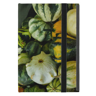 Gourds Galore iPad Mini Case