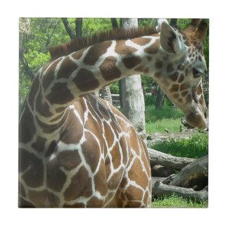 Graceful Giraffe Ceramic Tiles