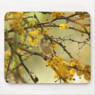 Graceful Prinia Mouse Pad