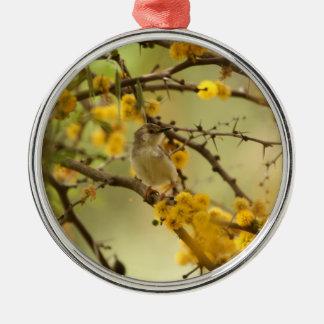 Graceful Prinia Ornament