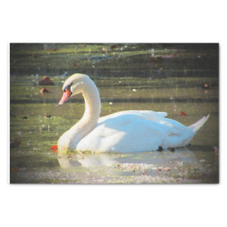 Graceful Swan Tissue Paper