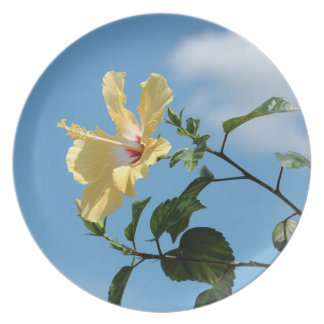 Graceful yellow hibiscus flower Plate