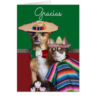 Gracias Spanish Thank You Chihuahuas Card