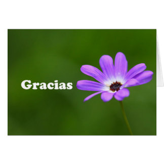 Gracias - Thank you in Spanish with purple daisy Card