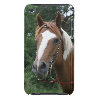 Gracie Girl iPod Touch Case