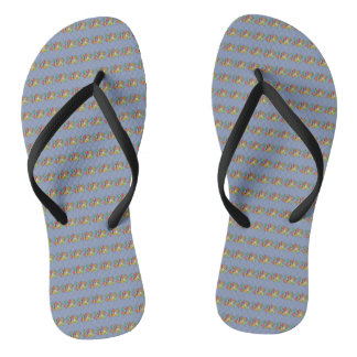 Gradient Multi-Color Flip Flops