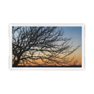 Gradient Sky in Winter Acrylic Tray