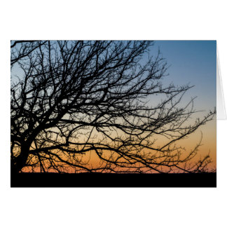 Gradient Sky in Winter Card