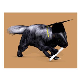 Graduate Skunk Post Card