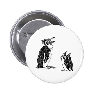 Graduating Penguins Tip Hats to Don Pin