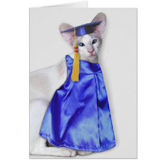 Graduation Cat Greeting Card