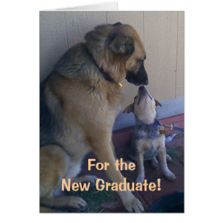 Graduation Congratulations Dogs Card