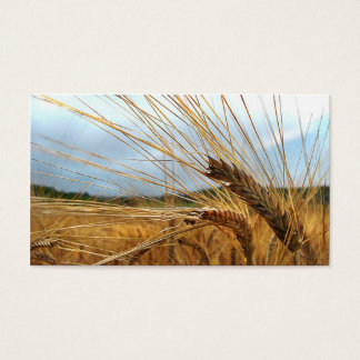 Grain Emporium Business Card