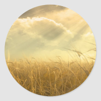 Grain Field Classic Round Sticker