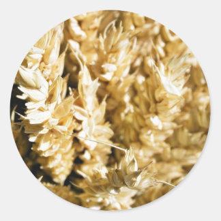 Grain Plant Seed Classic Round Sticker