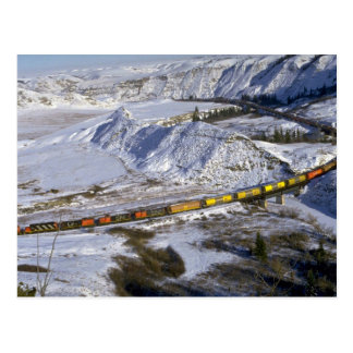 Grain train, Alberta, Canada Winter Postcard