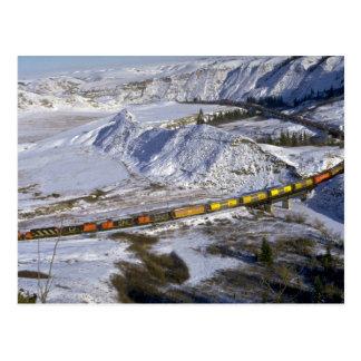 Grain train, Alberta, Canada Winter Postcard