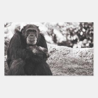 Grampa Monkey Sticker