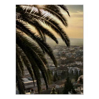 Granada From Above Poster
