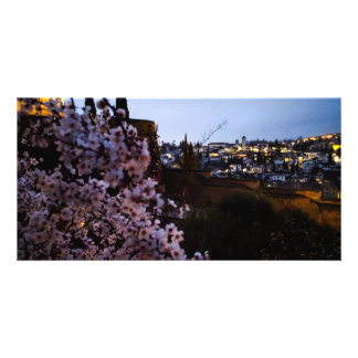 Granada's Albayzin seen from The Alhambra's almond Card