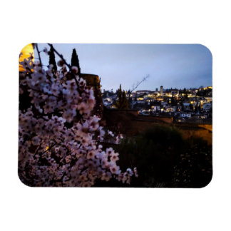 Granada's Albayzin seen from The Alhambra's almond Rectangular Photo Magnet